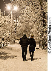 Couple in winter park at night - Loving couple walks on a...
