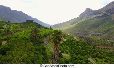 Flying above lush landscape and mountains at Gran Canaria -...