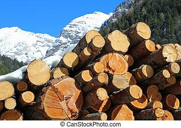 leñadores, montañas, grande, corte, troncos