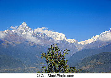 machhapuchhre landscape under blue sky in nepal