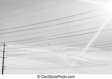Minimalism Black and White Power Lines - Power lines form an...