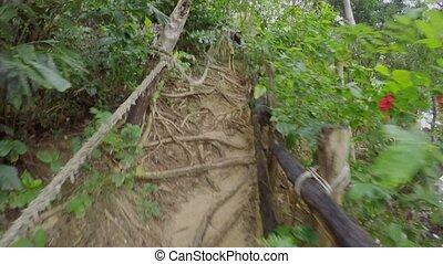 Path in jungle pov