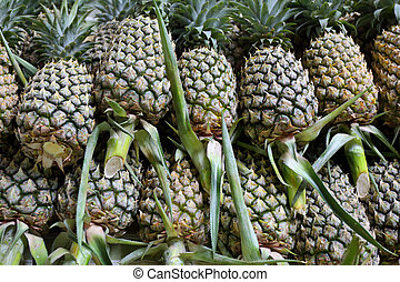 pineaples on market - pineaples on the market in Thailand -...