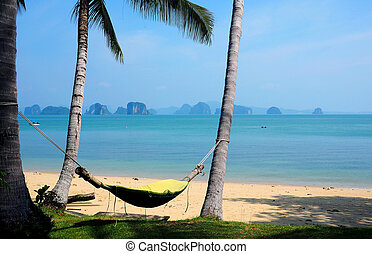 hammock hanging between two trees on a beach