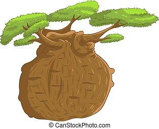 African iconic tree, baobab tree