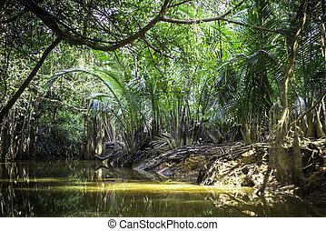 Canal at Phang Nga, Thailand - Canal at Phang Nga Province...