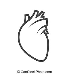 Human Heart Icon on White Background. Vector