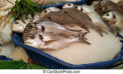 Dorado fish for sale at the market - Dorado fish on ice for...