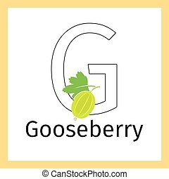 Gooseberry and letter G coloring page - Kids education card...
