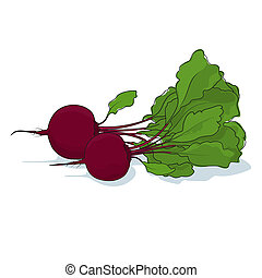 Beetroot Vegetable on White Background - Beetroot, Two...