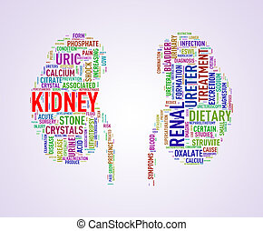 Kidney shape wordcloud wordtag - Illustration of kidney...