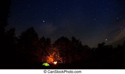 Tourist camp in the forest under a starry sky.Timelapse.
