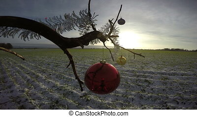 tree branch on winter crop field with Christmas bauble and...