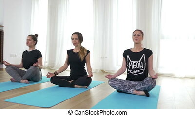 Three beautiful young women standing in lotus position on...