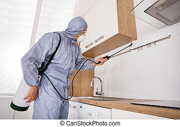 Pest Control Worker Spraying Pesticide In Kitchen - Pest...