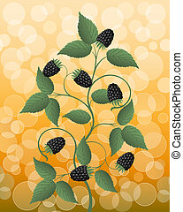 Floral background with a blackberry