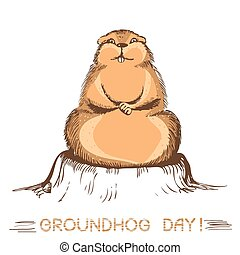 groundhog day marmot.Vector handdraw illustration on white