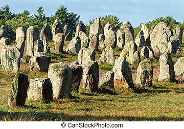 carnac monoliths - Carnac monoliths alignment under morning...