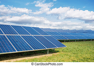 Solar Farm. Green Fields Blue Sky, Sustainable Renewable...