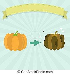 Rotten pumpkin with flies and fresh pumpkin. Blank ribbon...