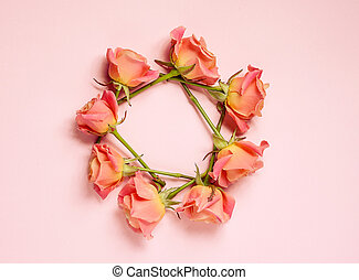 pink roses on pink background, top view