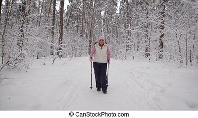 Winter forest. The elderly woman spends the leisure-time in the wood and supports the health by walks. The   the level of the physical activity. The pensioner goes the Scandinavian step.