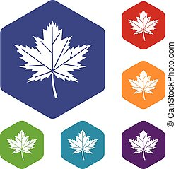 Maple leaf icons set rhombus in different colors isolated on...