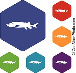 Fresh sturgeon fish icons set rhombus in different colors...