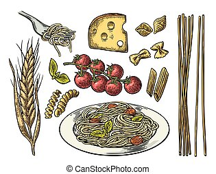 Set pasta with tomato branch, cheese, ear of wheat. Vector...