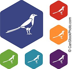 Bird magpie icons set rhombus in different colors isolated...