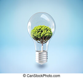 Growth and idea concept - Absract lamp with tree inside on...