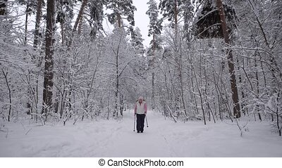 Wood. Day winter forest. The elderly woman on walk. The aged...