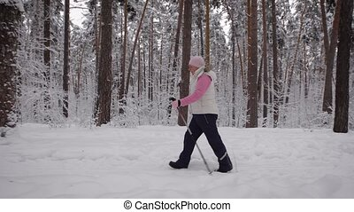 The pensioner in the wood walks on a footpath along trees....