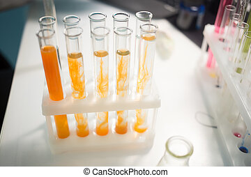 Tubes with reagents on stand at table in laboratory