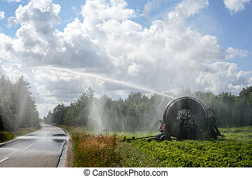 agricultural water irrigation system - Danish summer when...