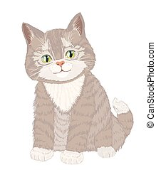 Cute little fluffy cat on white. vector