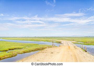 Dirty road to Lagoa do Peixe lake with wood bridge - Cows...