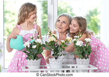 granny with her granddaughters - Portrait of a granny with...
