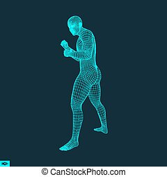 Boxer. Fighting Man. 3D Model of Man. Polygonal Design....