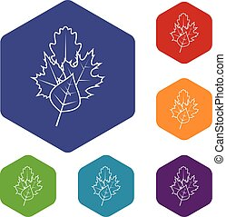 Leaves icons set rhombus in different colors isolated on...