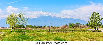 Panoramic view of mount Olympus, Pieria, Makedonia, Greece -...