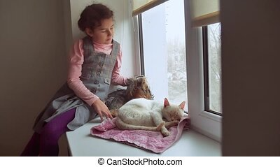 girl teen and pets cat and dog pet looking out the window,...