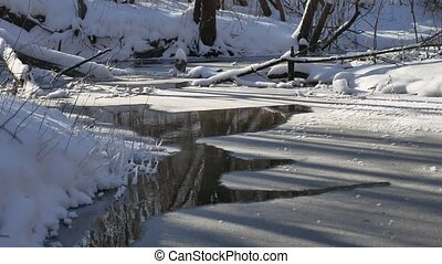 landscape forest stream flows in the winter forest nature...