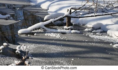 forest stream flows in landscape the winter forest nature...