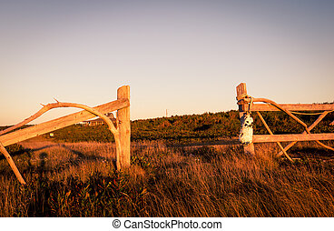 wooden fence post - Wooden fence posts in a field in Prince...