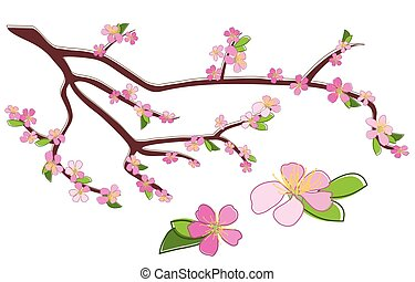 branch of peach with rosy flowers - vector - branch of peach...