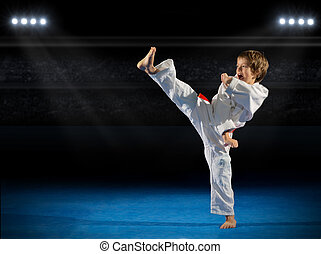 Boy martial arts fighter in sports hall
