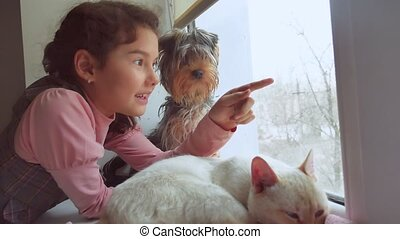 girl teen and pets cat and dog looking out the window, pet...