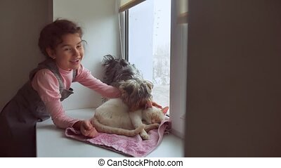 girl teen and pets cat and dog a looking out the window, pet...