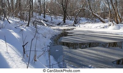 forest landscape stream flows in the winter forest nature snow,